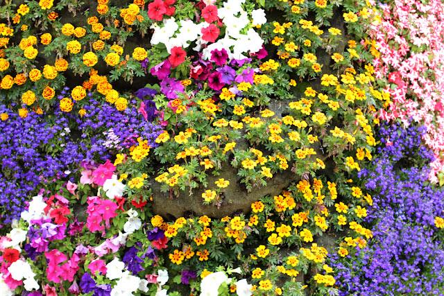 Flower dog in Bilbao, Spain - London travel blog