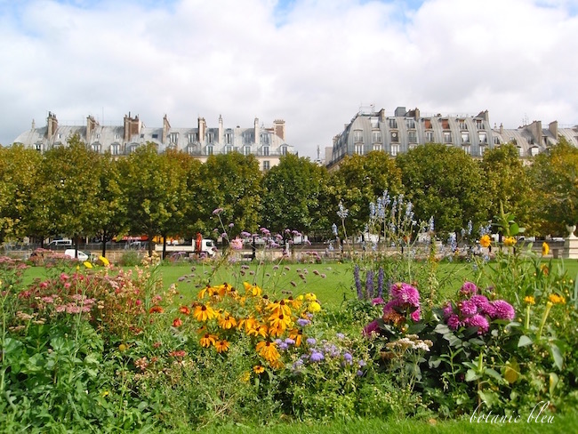 paris-tuileries-garden-flowers-near-paris-apartments