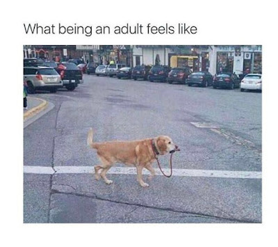 what being an adult feels like