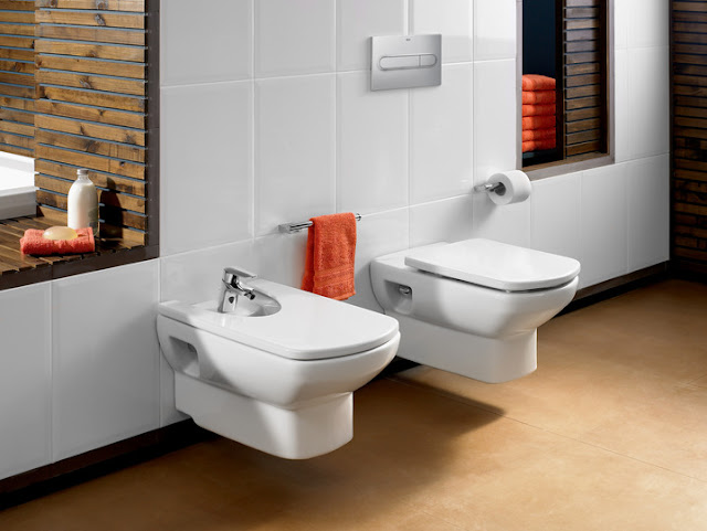 Cat logo casa de banho roca 2013 decora o e ideias for Inodoro para discapacitados ferrum