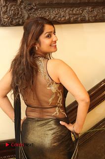 Actress Nikitha Pictures in Saree at Apartment Movie Audio Launch  0073
