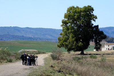 Excursión Sierra Norte de Sevilla, 30 de Marzo del 2019. Grupo Local SEO-Sevilla.