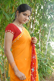 Keerthi Saree Pictures (49)