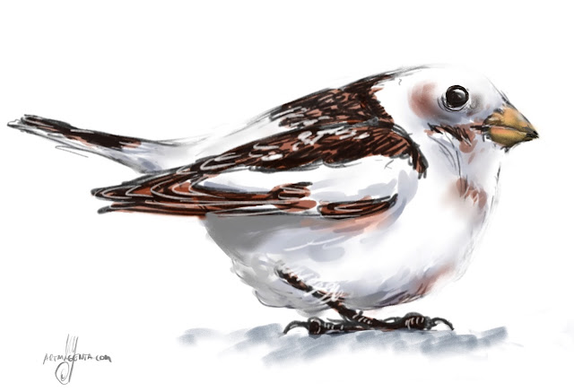 Snow bunting Bird painting by Artmagenta