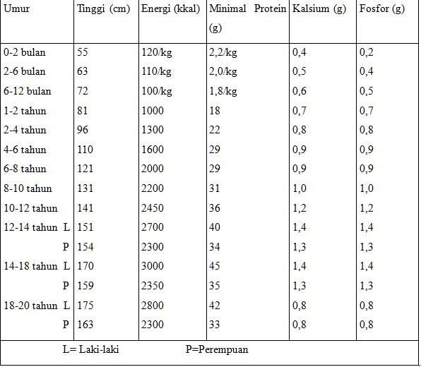 Kenapa Penderita Penyakit Ginjal Perlu Mengurangi Protein