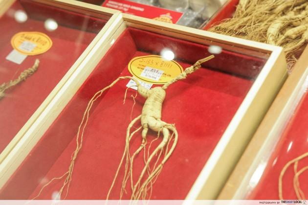 Fake Ginseng Roots