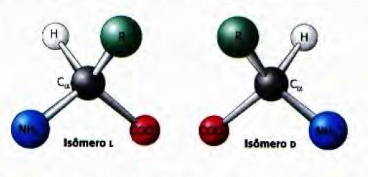 isomero aminoacido