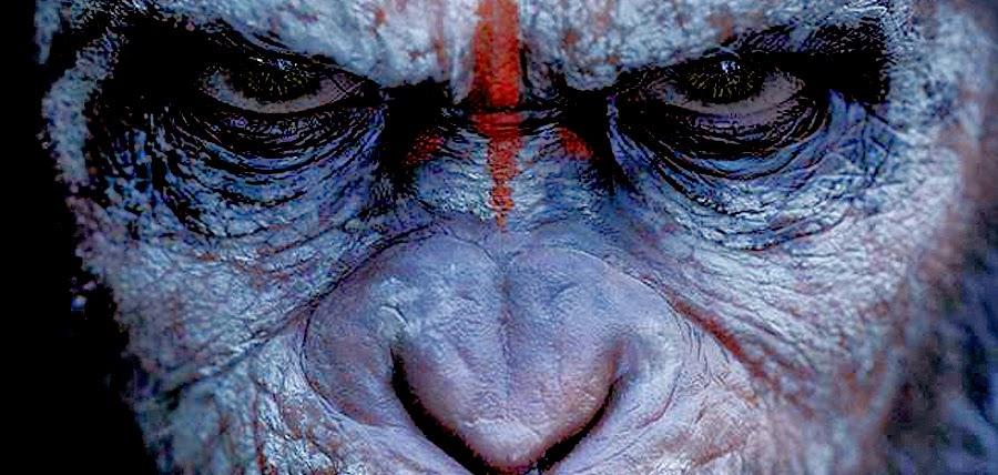 Ameninţătorul Cezar în Dawn Of The Planet Of The Apes