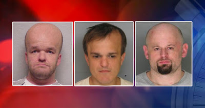 Reign Of Boston Midget Crime Gang May Be Short