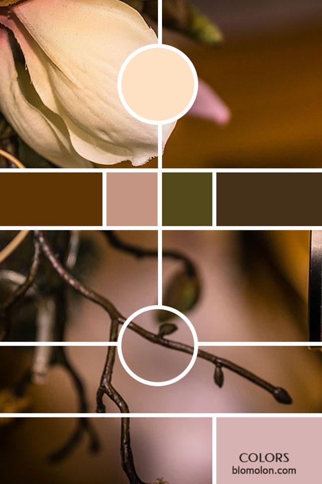 variedad_en_color_moodboards_5