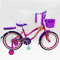 18 rmb venice ctb sepeda anak
