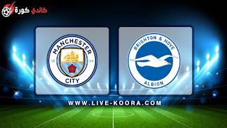 مشاهدة مباراة مانشستر سيتي وبرايتون بث مباشر 12-05-2019 الدوري الانجليزي