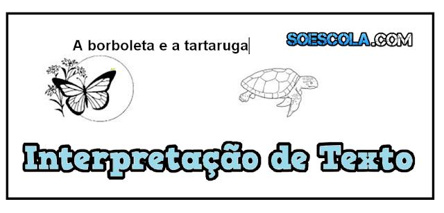 A Borboleta e a Tartaruga: Interpretação de Texto