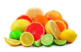 Como cultivar citricos a partir de las semillas