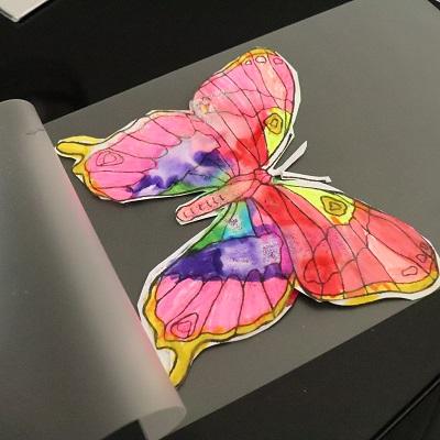 activité papillon