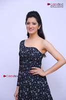 Telugu Actress Richa Panai Stills in One Shoulder Floral Long Dress at Rakshaka Bhatudu Movie Interview  0052.JPG