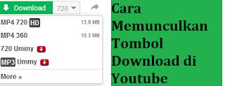 Cara Memunculkan Tombol Download di Youtube 100% Berhasil
