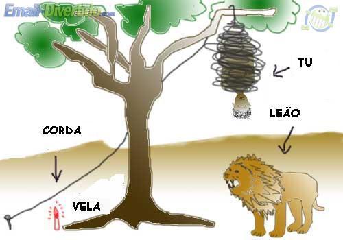 leão corda selva áfrica