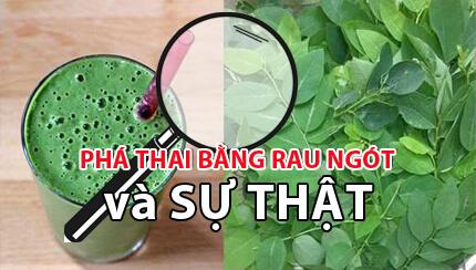 Tự phá thai bằng rau ngót tại nhà có nên hay không?-https://phuongphapphathainoikhoa.blogspot.com/