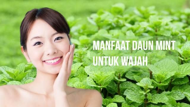 Manfaat daun mint untuk wajah kecantikan