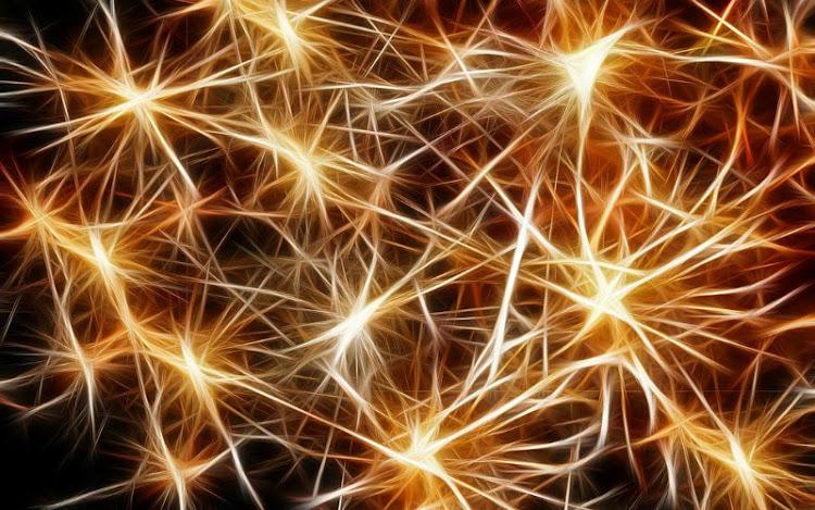 Neuroquímica