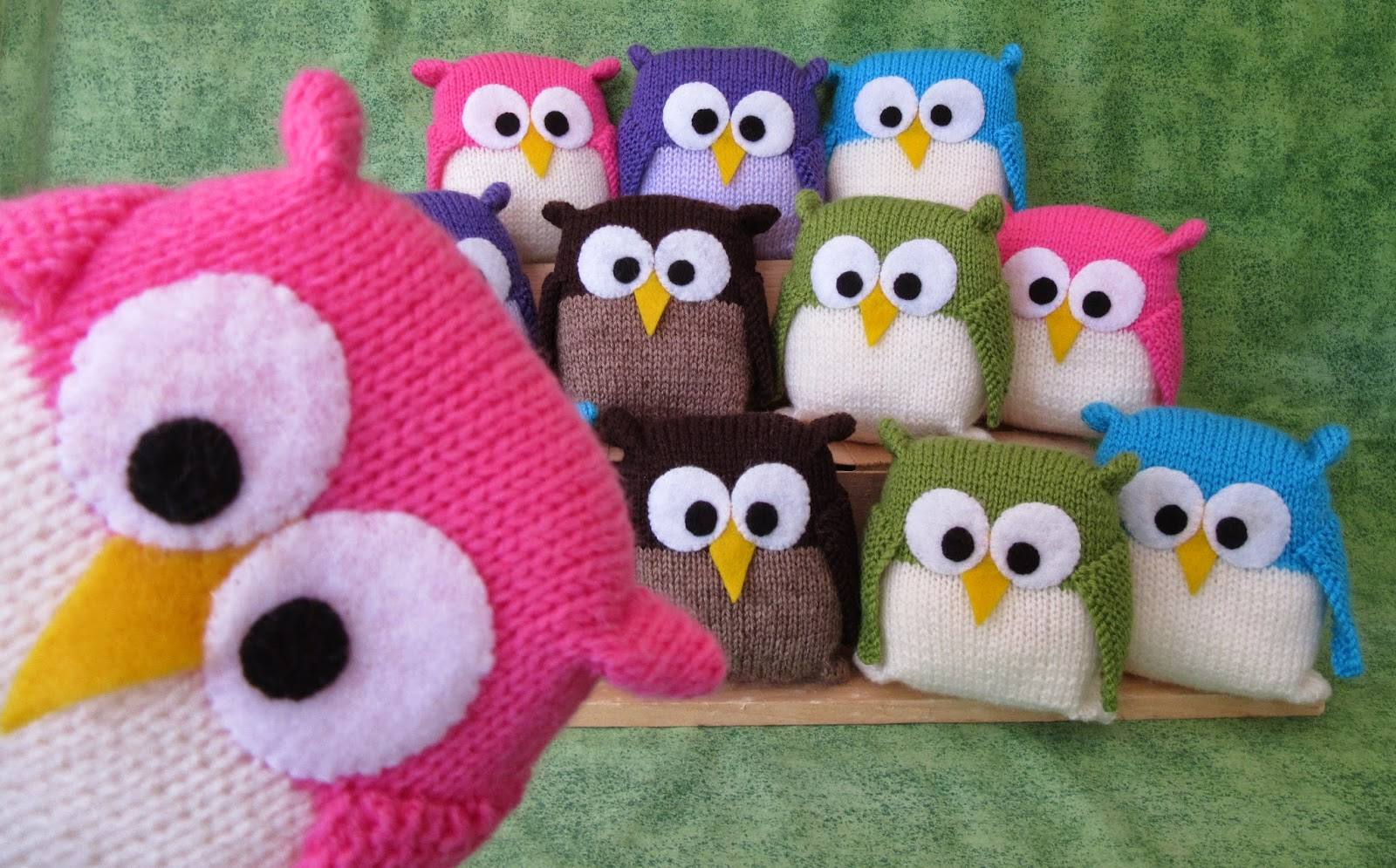 knitted owls sitting in rows with one owl close up in bottom left corner
