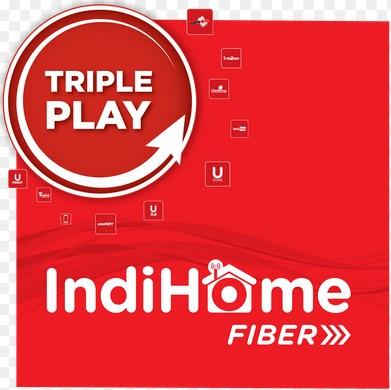 Fiber Indihome