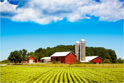 grant_programs_help_farmers_and_small_business_in_new_york_state