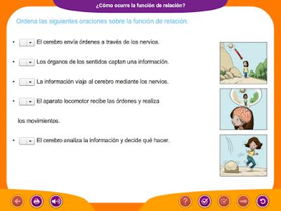 http://ceiploreto.es/sugerencias/juegos_educativos_6/2/4_Como_ocurre_funcion_relacion/index.html
