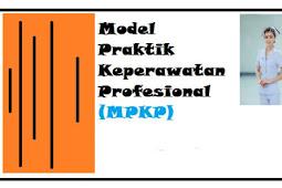 MPKP (Model Praktik Keperawatan Profesional), Pengertian, Langkah Pelaksanaan / Implementasi Hingga Kelebihan serta Kekurangan
