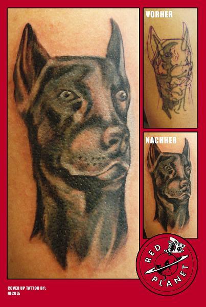 Lost Insurance Number >> Doberman Pinscher: Doberman Tattoos