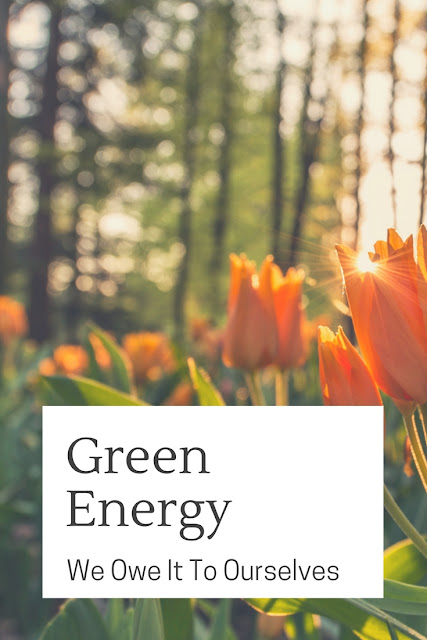 The time has come to phase out the internal combustion engine altogether in favour of greener, more sustainable options. No matter what anyone says, and there are many with a vested interest who will try and convince you otherwise, green energy is the need of the day.
