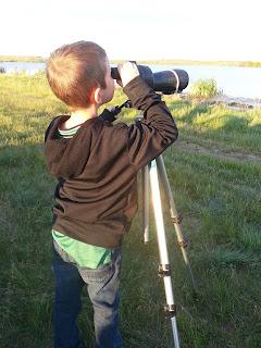 Northeast Swale Watching Adventure