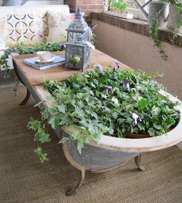 Una tina con plantas y mesa
