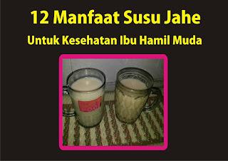 12 manfaat Susu Jahe Untuk Kesehatan Ibu Hamil Muda by Ommasakom