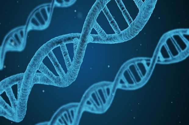 Antiviral gene