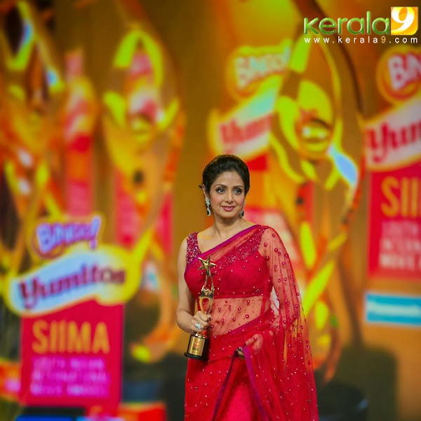 Sreedevi hot navel show in saree from SIIMA awards