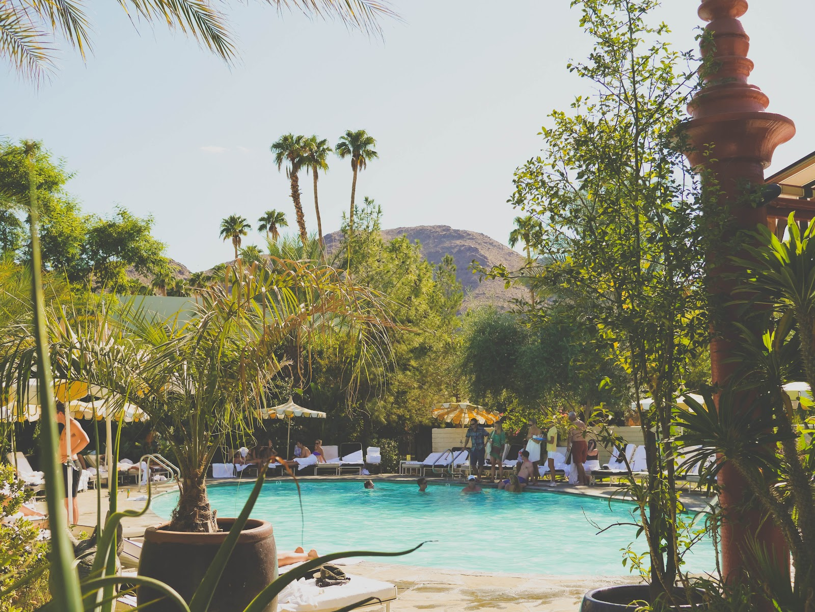 scenes from the j m wedding weekend at the parker palm springs