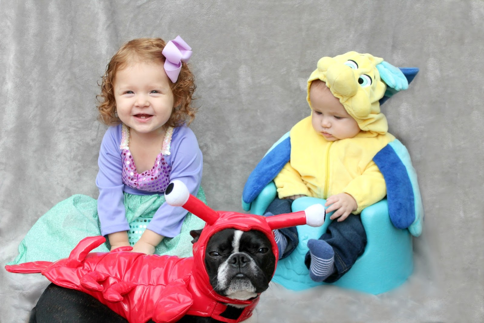 Lucy is going as Ariel and Parker will join her as Flounder ) I even found a lobster costume for Winston which is close enough for him to ...  sc 1 st  Like Honey & October 2016 - Like Honey