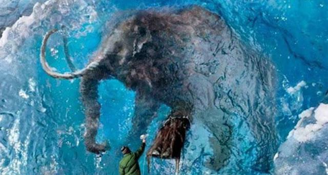 Mamut conservado en hielo