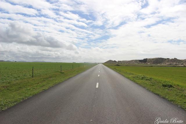 Estrada molhada