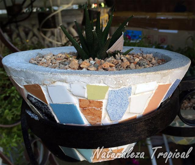 Maceta de hormigón decorada con fragmentos de losas de colores