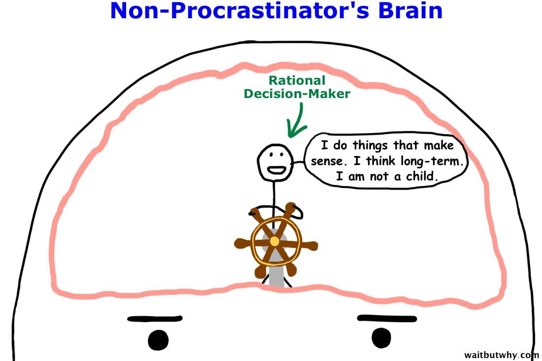 Why Procrastinators Procrastinate — Wait But Why