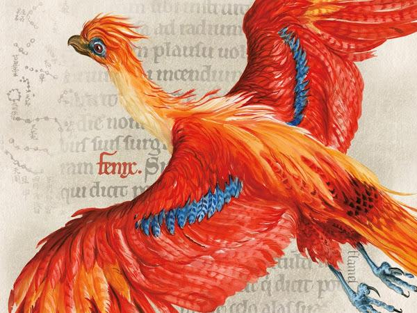 Novos livros do universo Harry Potter