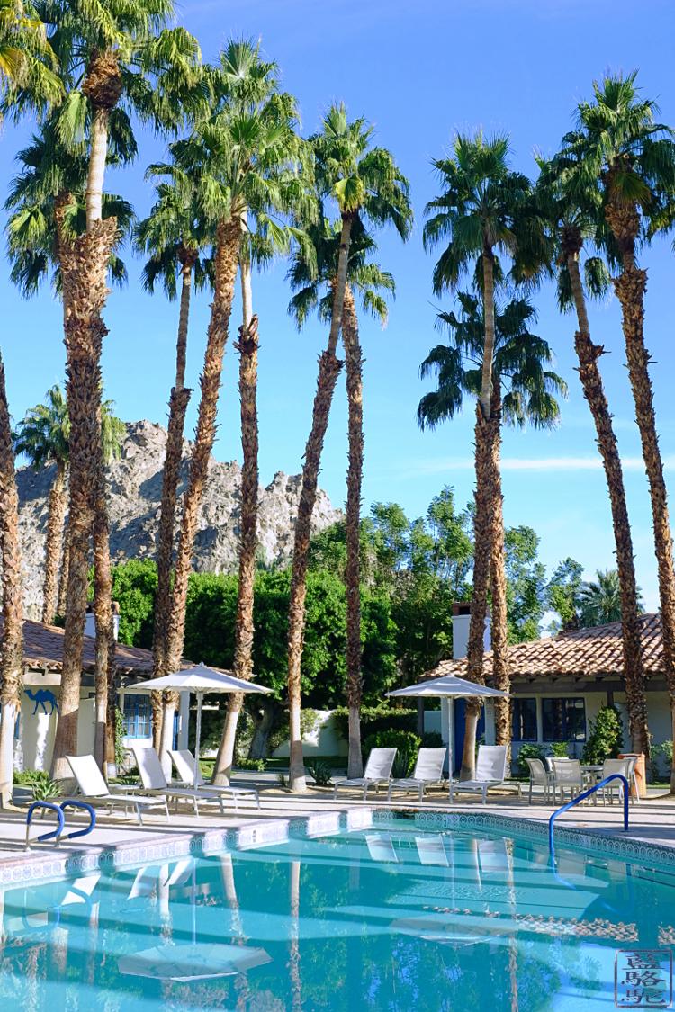 Le Chameau Bleu - Hotel La Quinta - Californie du Sud USA