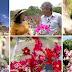 Globo Repórter mostra o recanto da rara rosa do deserto na Chapada Diamantina; assista