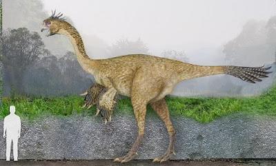 Tamaño Gigantoraptor