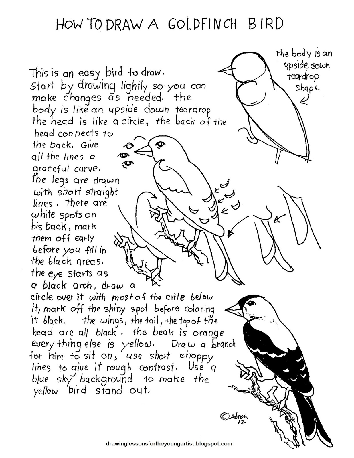 How To Draw Worksheets For The Young Artist: November 2012