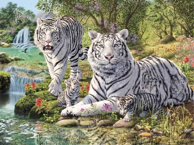 Tiikeri tapetti eläimet valkoinen