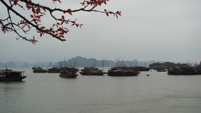 Travel tips for a plan to visit Halong Bay perfect 1